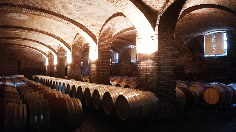 The beautiful cellars at ceretto copy