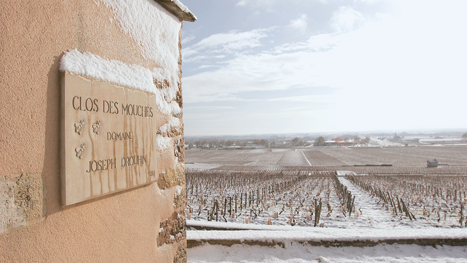 Clos des mouches in winter copy edited