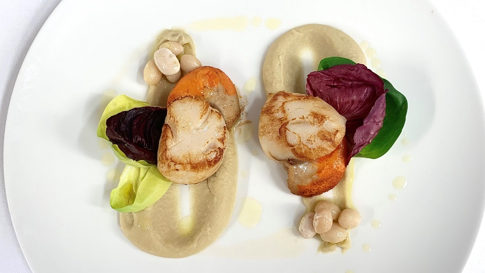 Scallops miani 1 copy