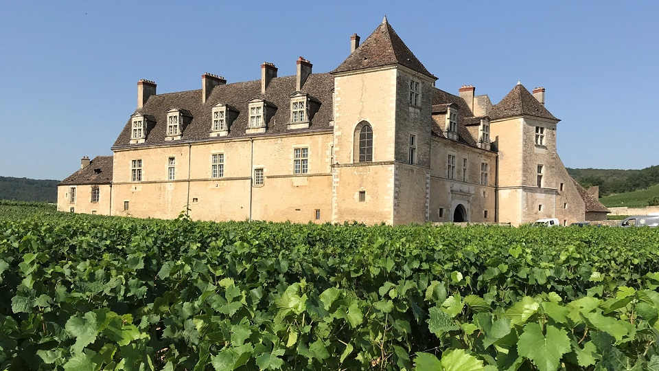 Georges mugneret's clos vougeot wines close to the chateau copy