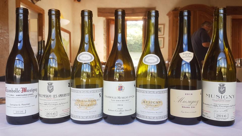 Burgundy 2016 musigny