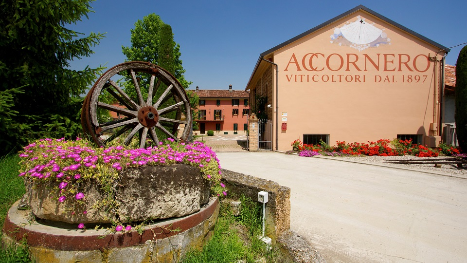 Welcome to accornero copy