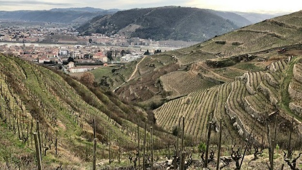 Some of the most complex and age worthy wines in the world come from the granitic soils of the hermitage hill copy