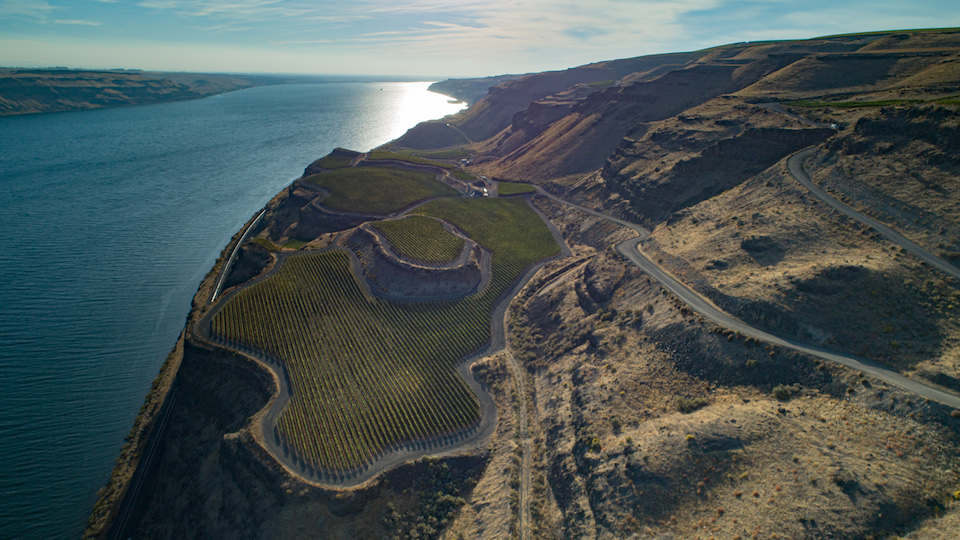 The golitzin family%e2%80%99s %28quilceda creek%29 mach one vineyard  surrounded by a stone amphitheater in the horse heaven hills ava.jpg copy
