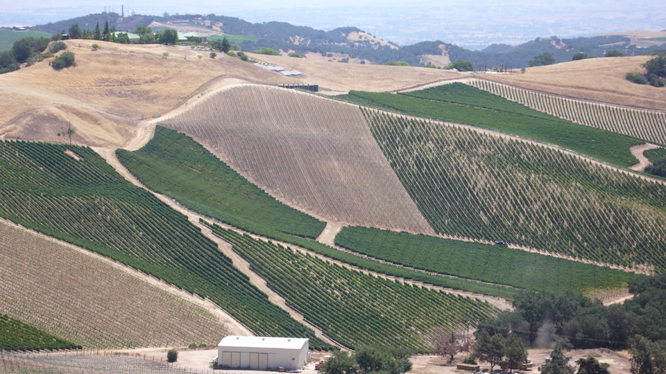 The high altitude vineyards of the adelaida district produce some of paso robles' most complex  ageworthy wines.jpg copy